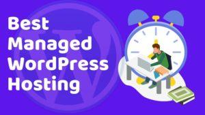 Best Managed WordPress Hosting Blogamigo