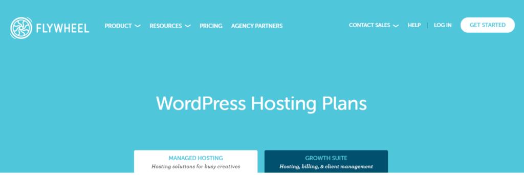 Flywheel Managed WordPress Homepage Blogamigo