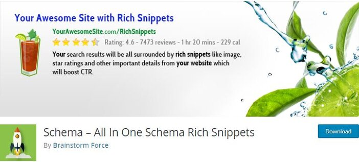 All in one schema WP Review Pro homepage