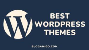 Best WordPress Themes - Blogamigo