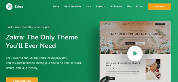 best minimalist wordpress themes zakra