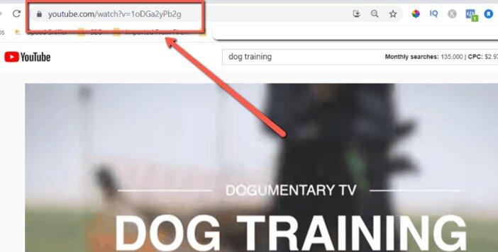 YouTube-Video-Page-Blogamigo.jpg